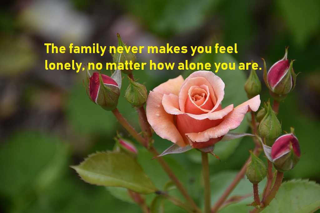 family quotes to help you express your love to your family