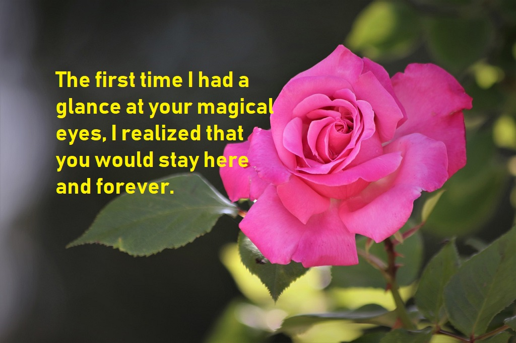 love quotes for him to impress a loved one in your life bestinfohub