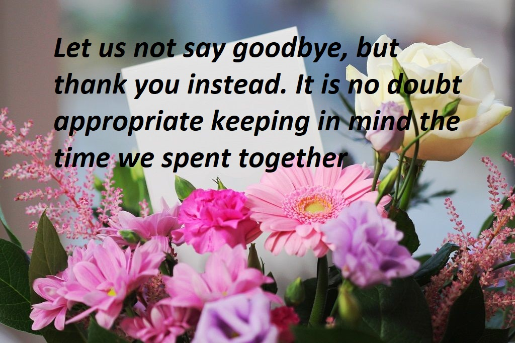 farewell quotes saying goodbye to your loved ones bestinfohub